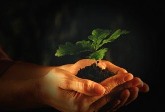 Inaugurando tema: Sostenibilidad